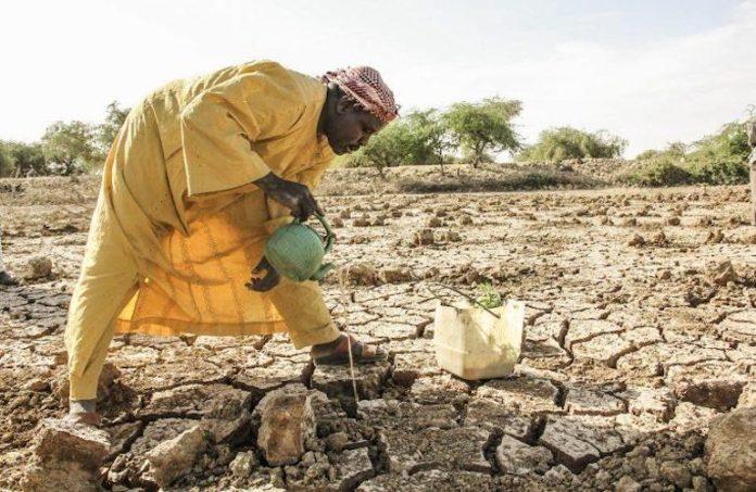 siccità in Ciad