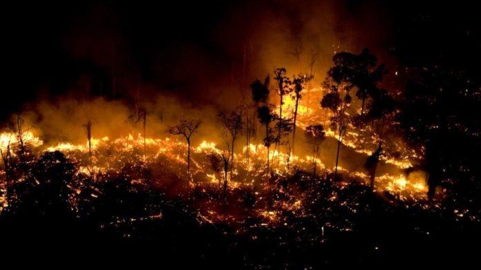 Floresta AmazôniaIncendio nella foresta a São Félix do Xingu, stato del Pará