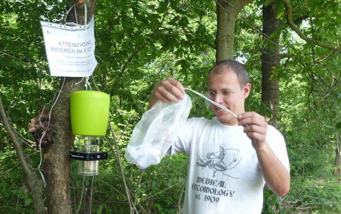 il monitoraggio delle larve delle zanzare nel Fossanse