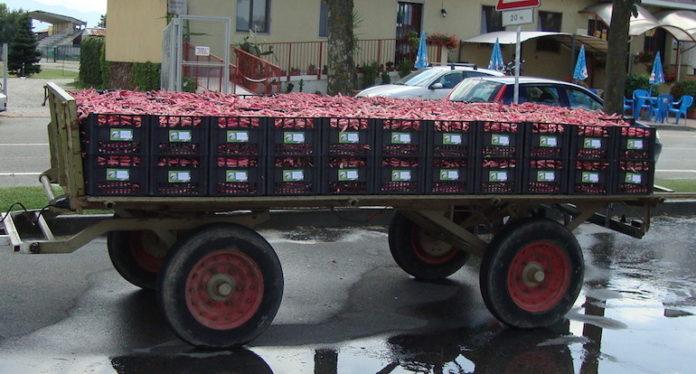 Centallo, il mercato dei fagioli