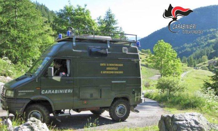 I Carabinieri forestali durante un controllo