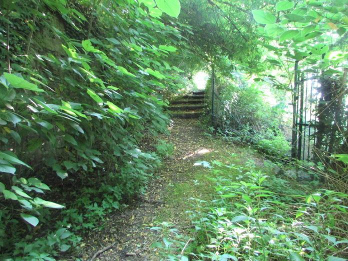 Sentiero Sangiorsa