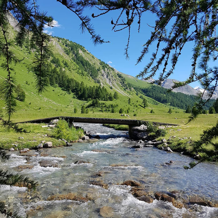 Fiume In Montagna