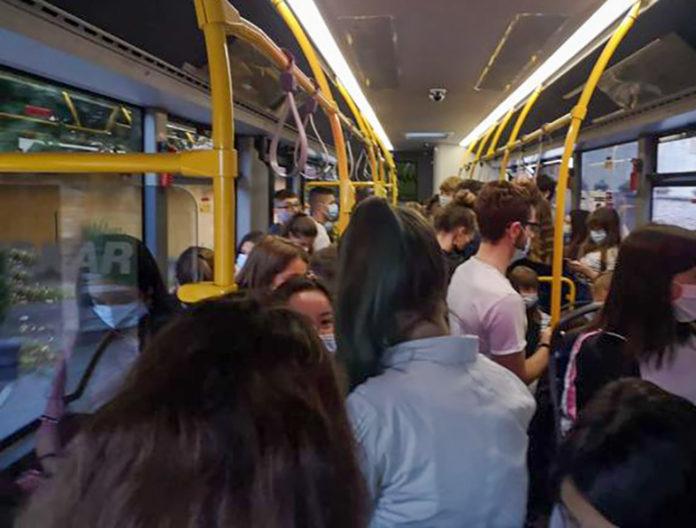 Centallo Bus Pieni