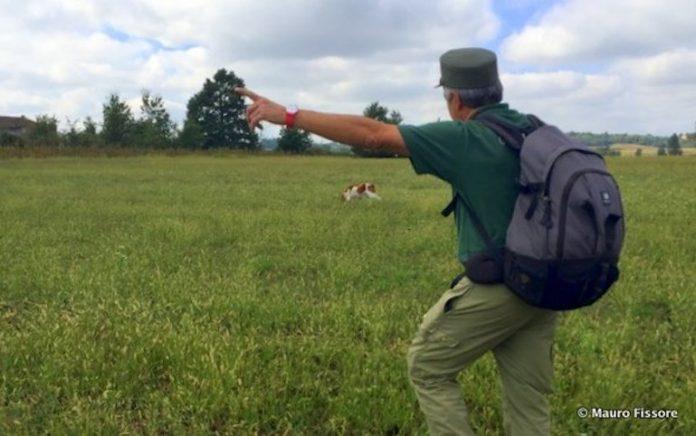 Indagini per escludere che i lupi morti a Bene siano stati avvelenati