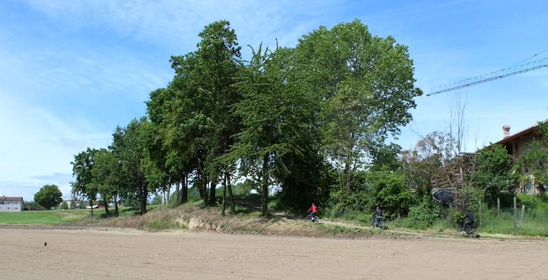 aria aperta bici percorso natura