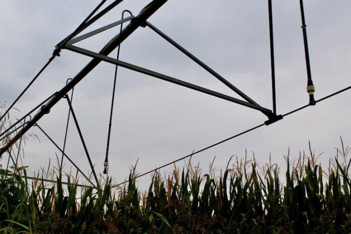 Un sistema per l'irrigazione dei campi tra Fossano e Trinità
