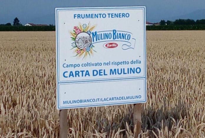 il cartello del Mulino Bianco in un campo di grano di Cussanio
