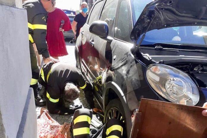 Salvati i tre gattini lanciati da un'auto in via Roma a Fossano